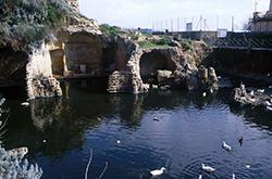 Sacello Augustali, Misenum