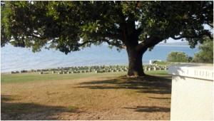 New Zealand Cemetery